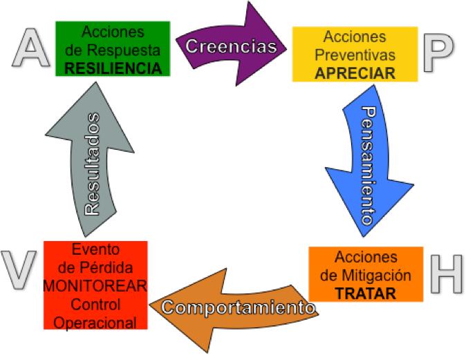 Fases ciclo del control de pérdidas (IFPO) - Ing. Kevin Palacios.