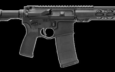 NUEVA línea de armas de fuego Seekins Precision SP15